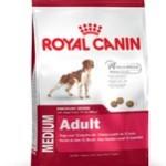 Alle hunde elsker Royal Canin (Foto Petworld.dk)