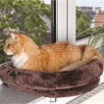 En god blød katteseng (foto petworld.dk)