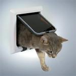 En fin lille kattelem (foto lavprisdyrehandel.dk)