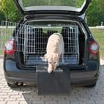 Gør køreturen mere komfortabel med et hundegitter (foto: lavprisdyrehandel.dk)